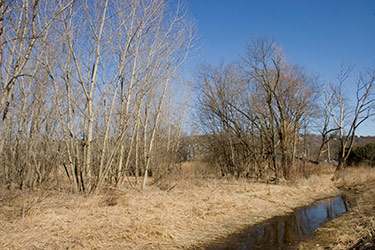 picture of floodplain