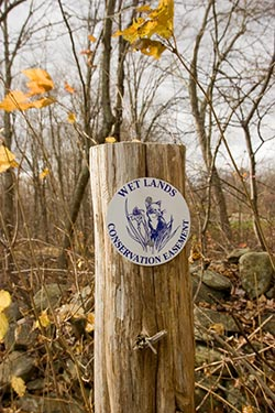 picture of wetland conservation marker